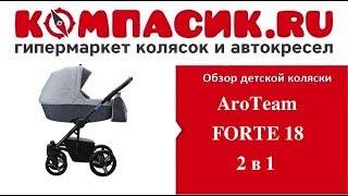 коляска Aro Team Forte 2 in 1 обзор