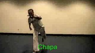 capoeira-basic moves