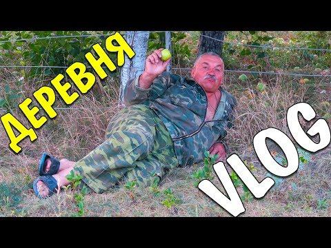 Деревенские будни / КУРСК & ЩИГРЫ / ЖИЗНЬ В ДЕРЕВНЕ 2018