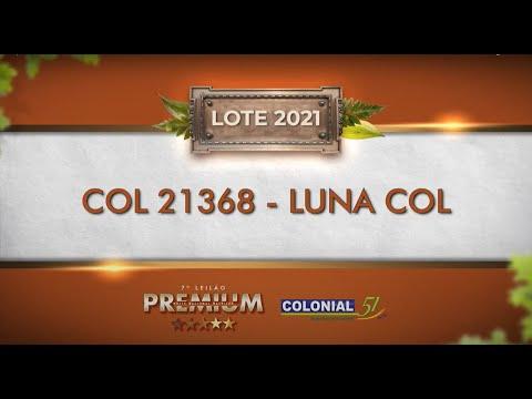 LOTE 2021   COL 21368