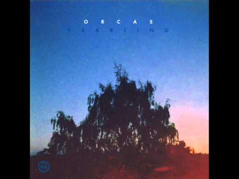 Orcas - Infinite Stillness