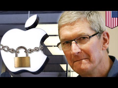 Apple iPhone hack: Tim Cook refuses FBI request to hack San Bernardino shooters' data - TomoNews