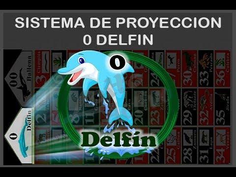 PROYECCION PARA JUGAR DESPUES QUE SALE EL (0) DELFIN - 100% EFECTIVO