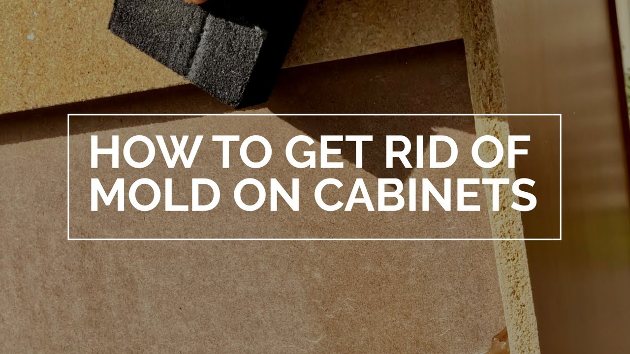 7 Steps To Get Rid Of Mold Growing On Cabinets Youtube