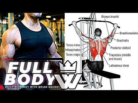 Full BODY WORKOUT For Strength And Mass
