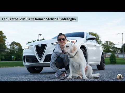 2019 Alfa Romeo Stelvio Quadrifoglio: Andie the Lab Review!