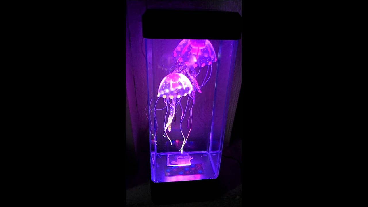 Neon jellyfish tank - YouTube