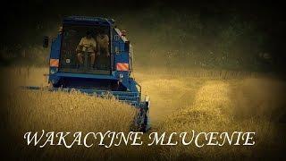 Żniwa 2014 ☆ Akcja Pszenżyto ☆ Bizon Rekord ZO58 ☆㋡ HD David PL bla ska