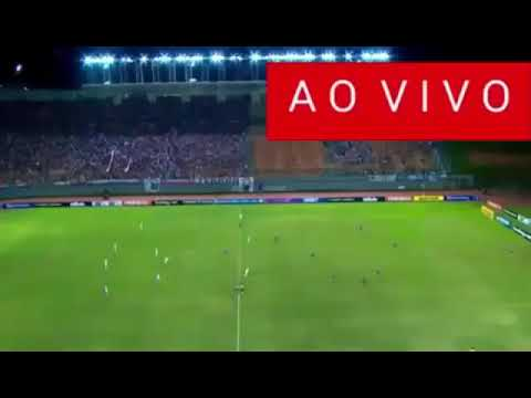 Assistir Brasil X Peru Ao Vivo 11 09 2019 Hd Hoje Youtube