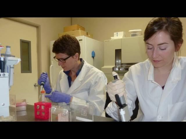 Nos scientifiques – d'un océan à l'autre – Dr. Cathryn Abbott