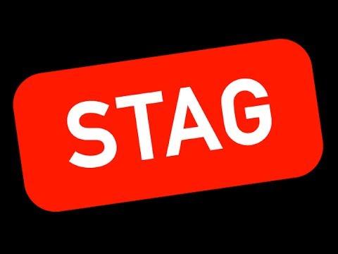Stag - Curses Base Music Tagger - Linux TUI