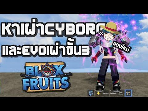 "Roblox สอนหาเผ่า ""CYBORG"" และevoขั้น3 บอกเลยอย่างเท่! (Blox Fruits)"