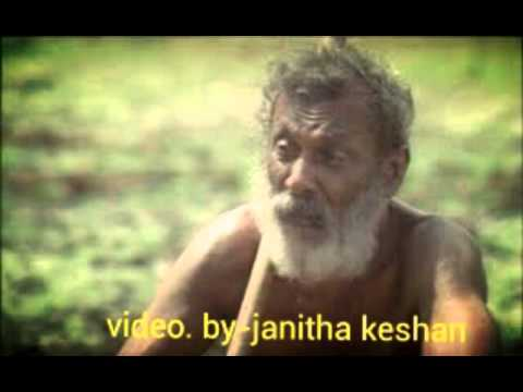 Thaththe (W.D.Amaradewa Upahara Song)
