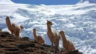 Cordillera blanca - Tours to Peru
