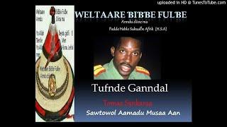Tufnde Ganndal e sawtowol Aamadu Musaa Aan - Tomaa Sankaraa (Lefol 2)