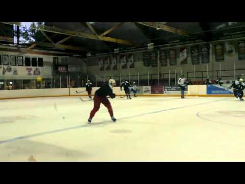NHL, OHL and AHL hockey players scrimmage game