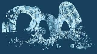 Goasia - Polar Light