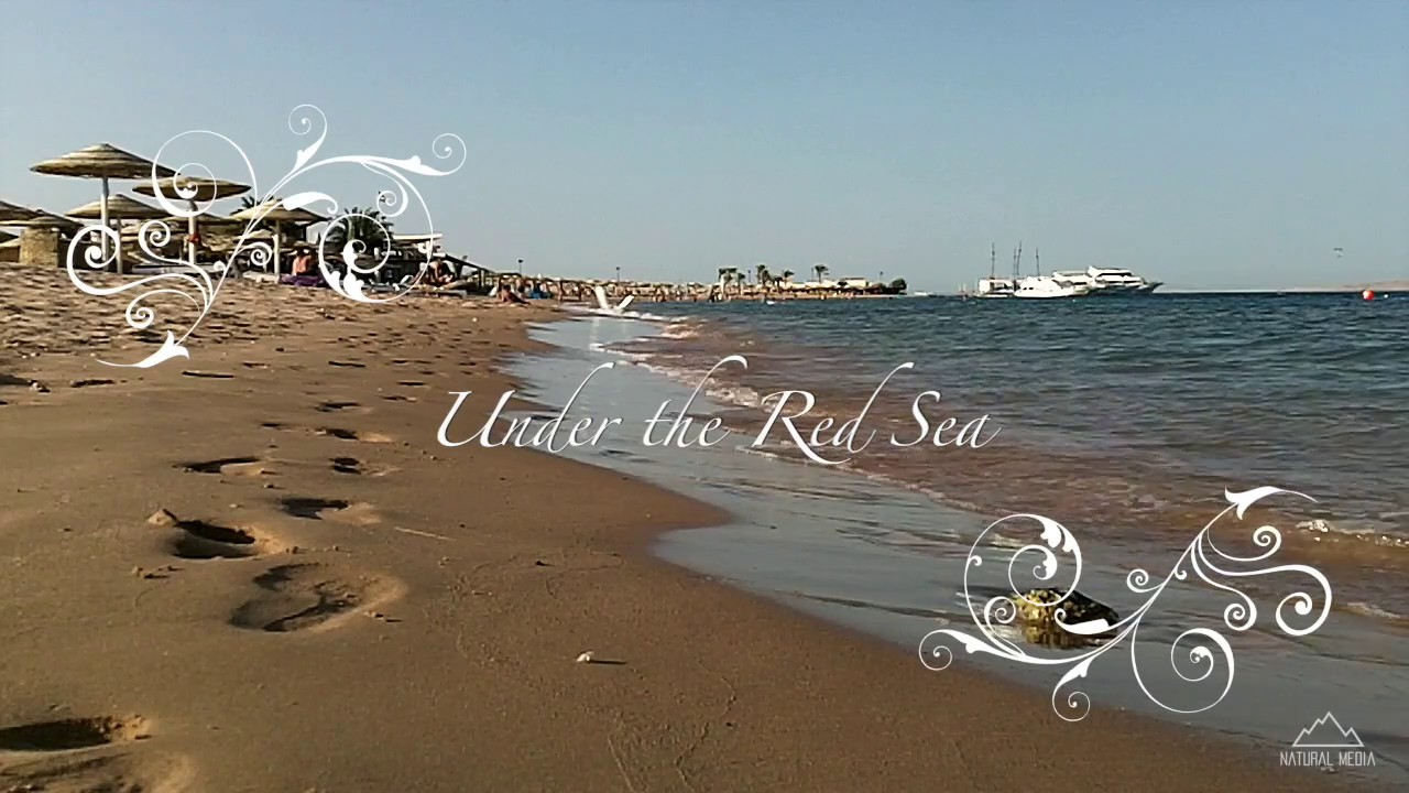 Dia Mundial dos Oceanos! 8 de Junho