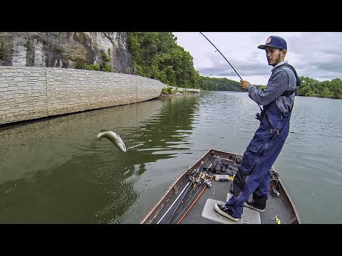 Bass Fishing the Upper Potomac River (ft. SBFISHINGTV) 6 SPECIES CAUGHT!!!