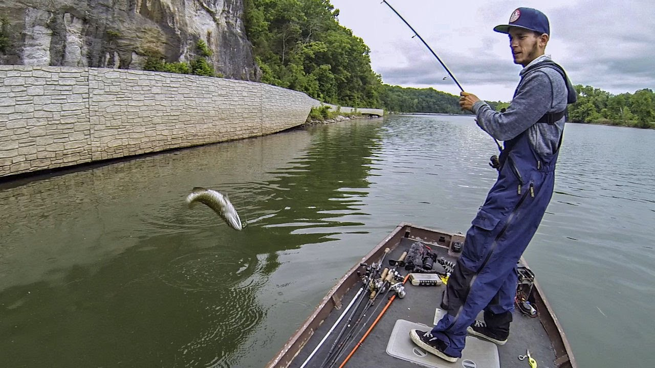 Bass fishing the upper potomac river ft sbfishingtv 6 for Potomac river fishing report