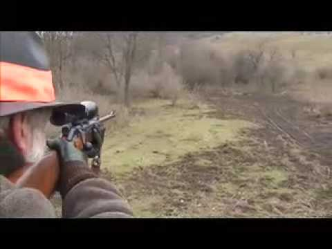 The Hunting of wild boars in Hungary 2