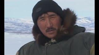 Охотники студёных берегов.