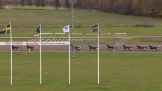 Vidéo de la course PMU PRIX TREARINGARNAS HOSTSERIE