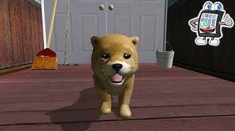 DOG SIMULATOR App Deutsch - Welpen veranstalten ein Chaos! Hunde Simulator - Spiel mit mir