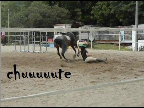 Equitation cours de saut d 39 obstacle rod o et chute doovi - Jeux de poney qui saute ...