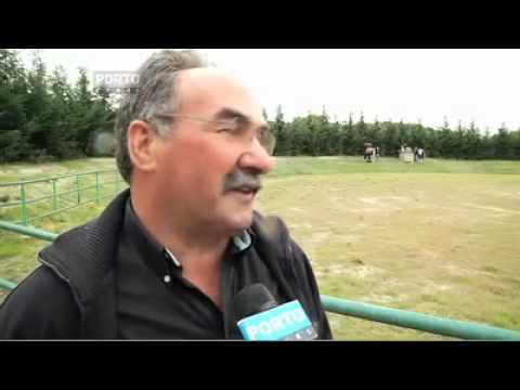 MONTALEGRE - Abertura do Campeonato de Chegas de Bois 2011