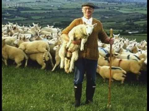Resultado de imagem para Pastor de ovelhas