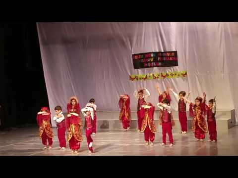 Türk Çocuğu Gösterisi