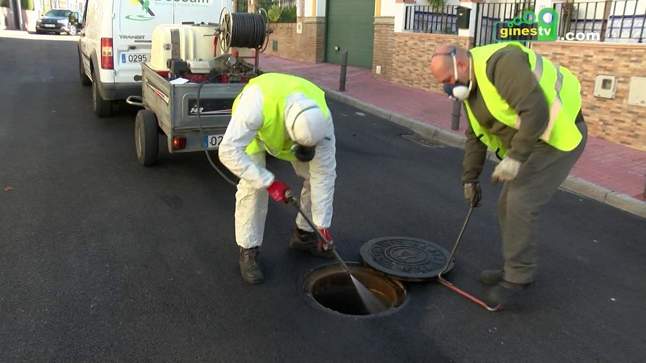 Campaña anual para la eliminación de plagas en el alcantarillado público del municipio
