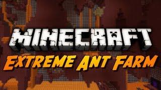 Extreme Ant Farm Survival - Ep. 4 - NOOOOOO!!!