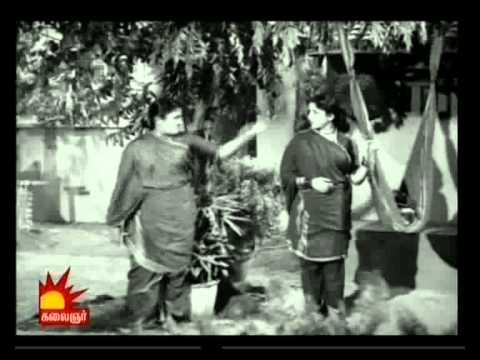 THAYILLA PILLAI Cheeradum Paingiliye-egopal