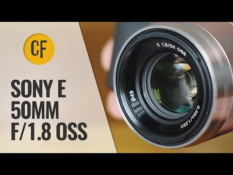 Sony 50mm f/1.8 OSS lens review with sample pictures