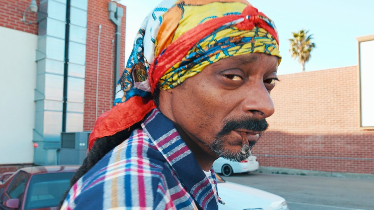 Download Snoop Dogg - Roaches In My Ashtray (feat. ProHoeZak) [Official Music Video]