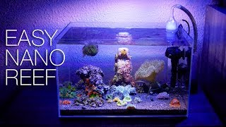 How To Clean A Nano Reef - The EASY Way!