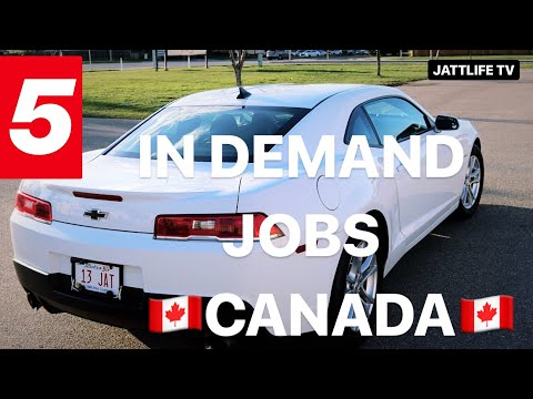 5 IN DEMAND JOBS IN CANADA.