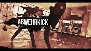 Basic & Train #12 Push Kick