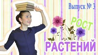 Уроки биологии: Рост растений (Вып. 3)