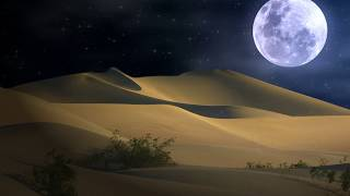 HOWLING DESERT WINDS -  Howling Wind Sounds for Sleep & Relaxation