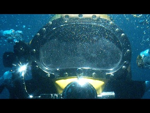 Living Undersea: Rare Footage of Marine Life