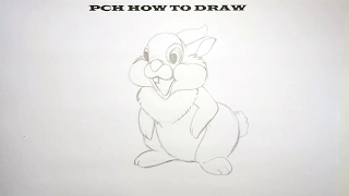 How to draw Thumper | PCH