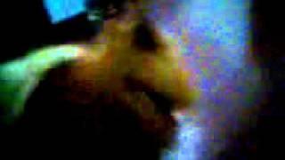 Pomeranian And Shi Tzu X Japanese Spitz