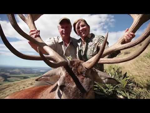 Four Seasons Safaris New Zealand - Guided By Four Seasons Safaris