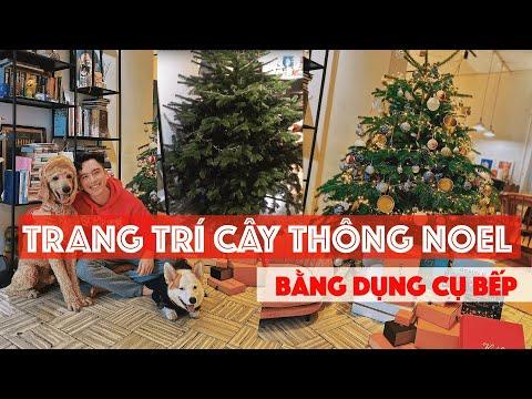 TRANG TRÍ CÂY THÔNG NOEL TƯƠI - LẦN ĐẦU MÌNH TỰ TRANG TRÍ NOEL // Dinology