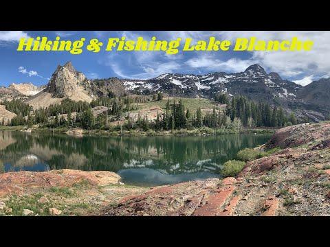 Hiking & Fishing Lake Blanche Utah - See The JUMPING Trout!