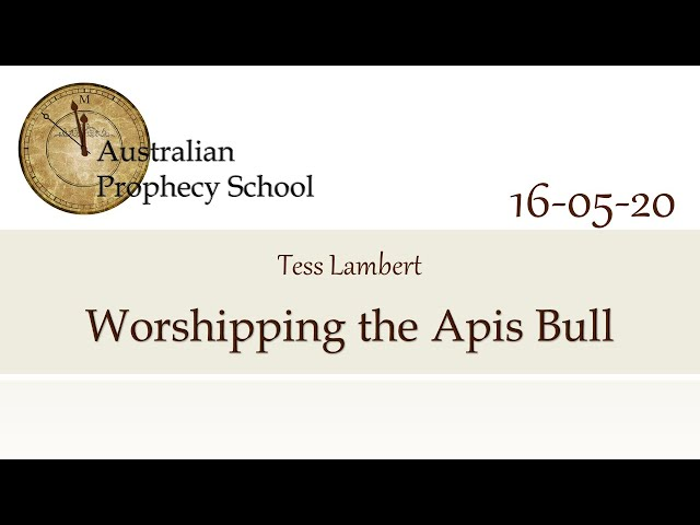 Worshipping the Apis Bull; Tess Lambert - 16.05.2020