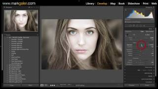 Install FREE Lightroom Presets